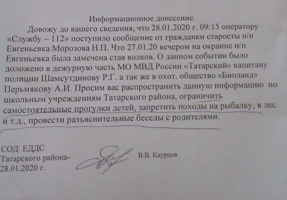 Фото Стаей волков напугали жителей Новосибирской области 2