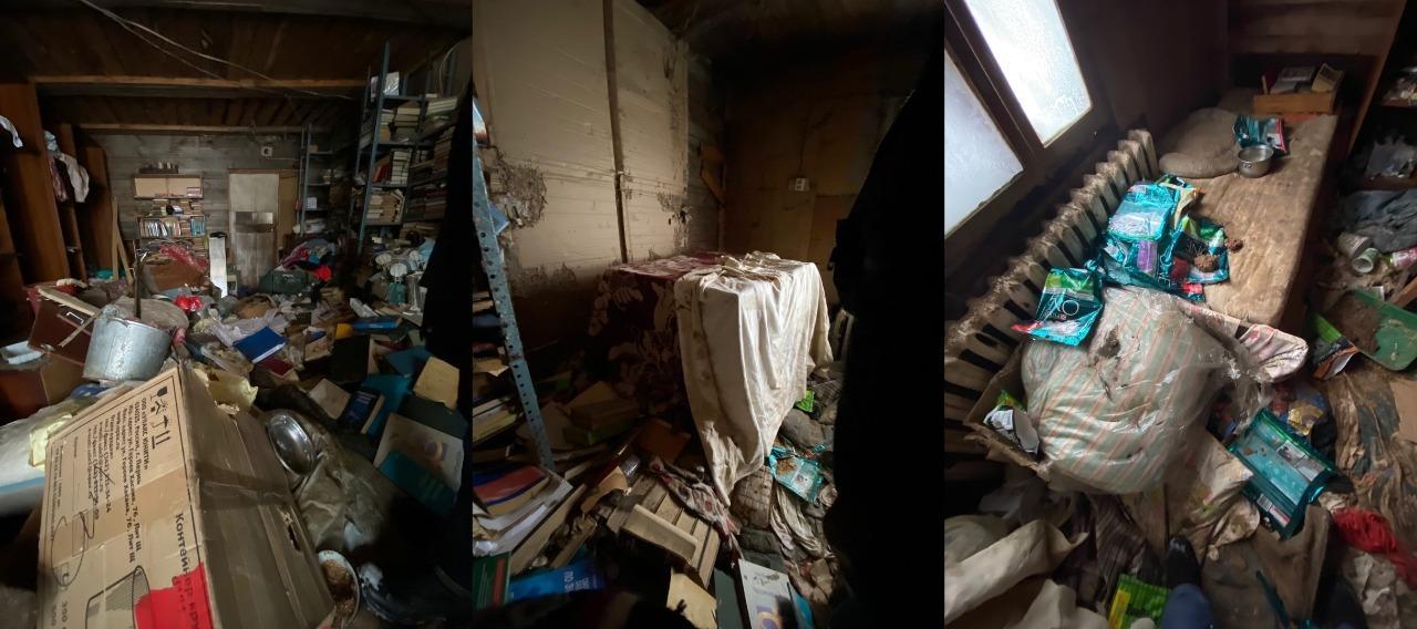 Фото «Братская могила» вместо дома: зооактивисты показали приют-«концлагерь» для животных в Евсино 2