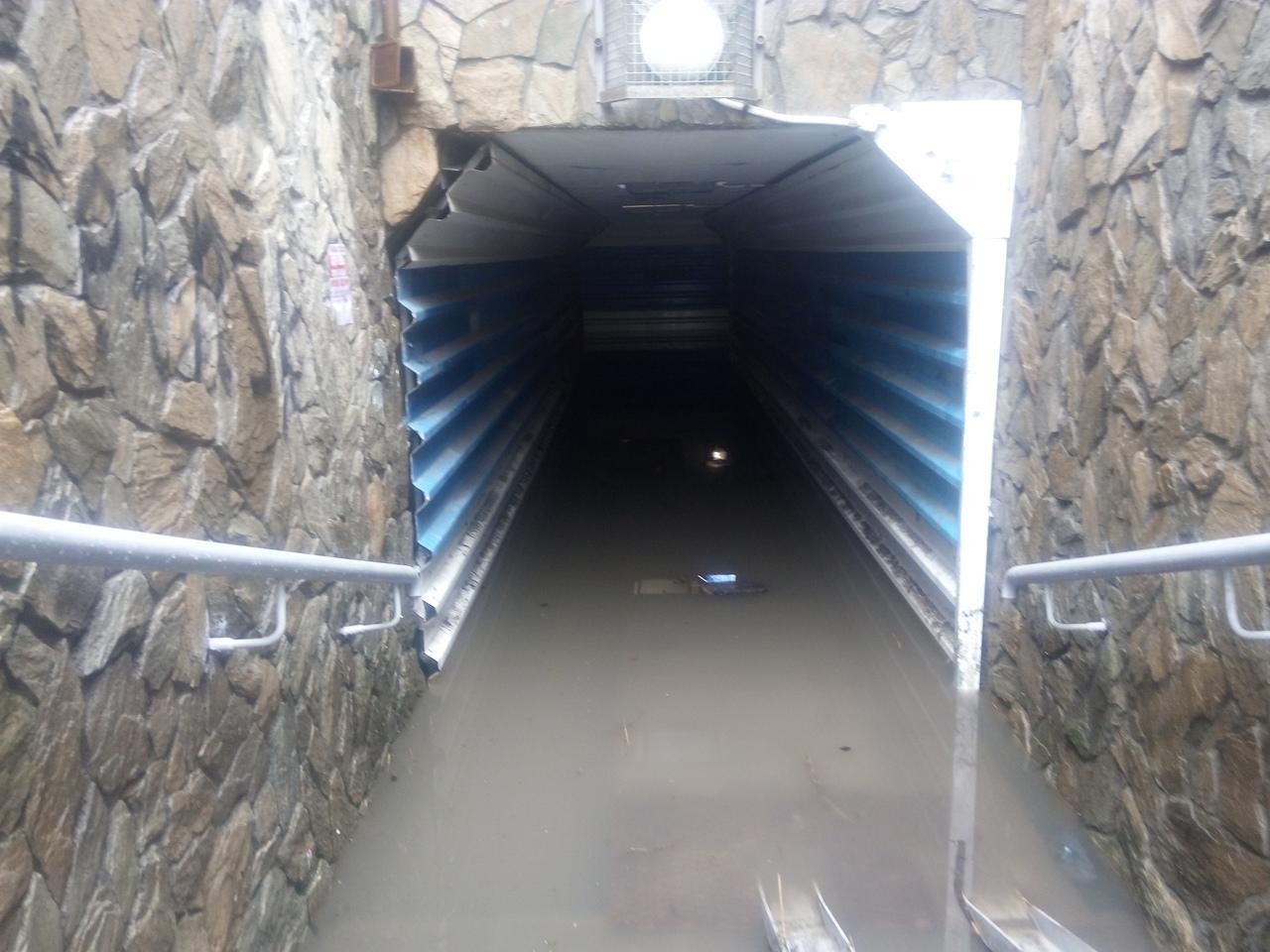 Фото «Здесь же не Иркутск»: администрация Оби не видит проблемы в затоплении города 2