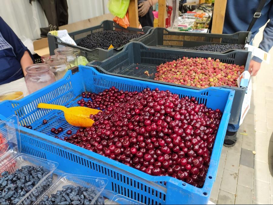 фото Не стесняйтесь торговаться: где и за сколько купить ягоды в Новосибирске - обзор цен 15