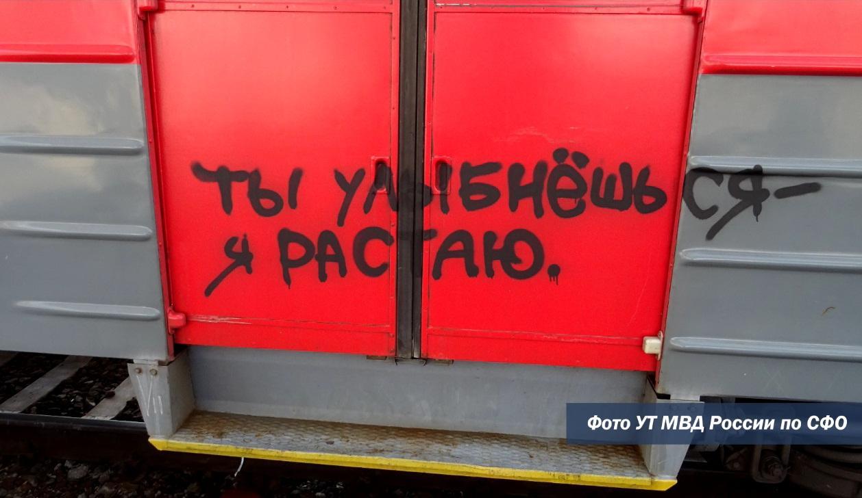 Фото Граффитисты из Омска ночью разрисовали поезд в Новосибирской области 2