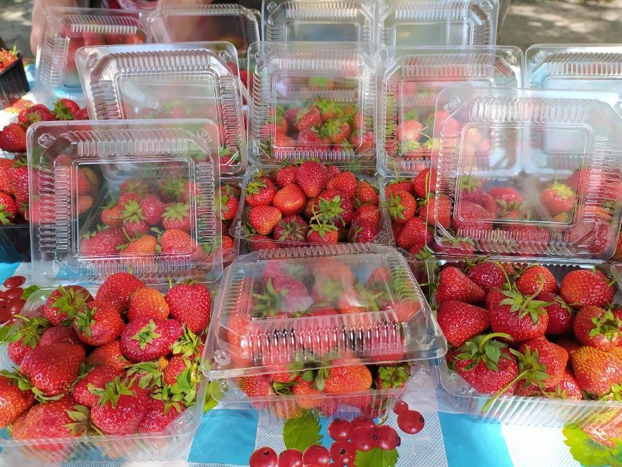 фото Не стесняйтесь торговаться: где и за сколько купить ягоды в Новосибирске - обзор цен 3