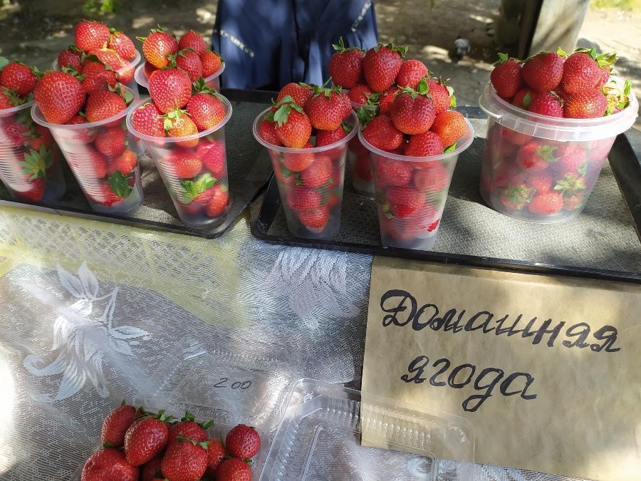 фото Не стесняйтесь торговаться: где и за сколько купить ягоды в Новосибирске - обзор цен 6