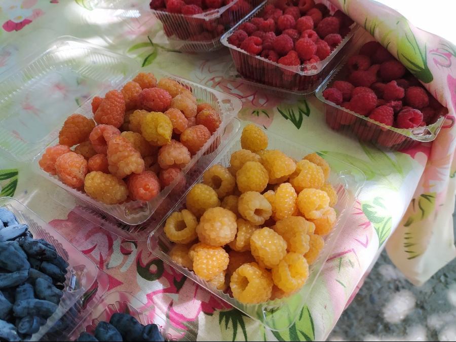 фото Не стесняйтесь торговаться: где и за сколько купить ягоды в Новосибирске - обзор цен 27