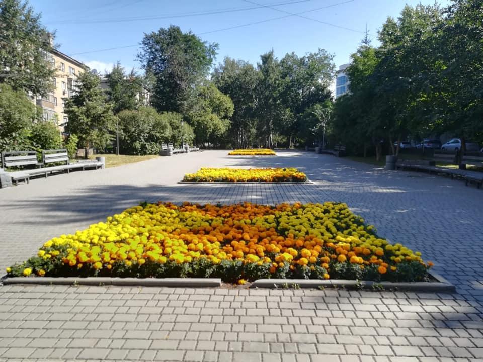Фото Жителям Новосибирска предложили придумать имена для скверов в своих микрорайонах 2