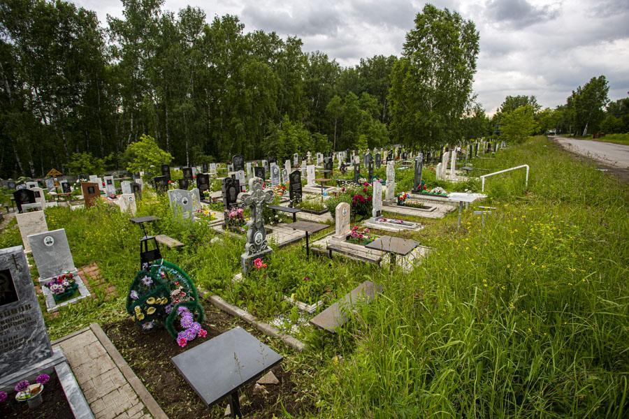 Фото Коронавирус в Новосибирске: ситуация к 15 июля 3