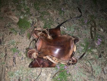 фото Протащила километр: лошадь убила маленького мальчика в Сибири 2
