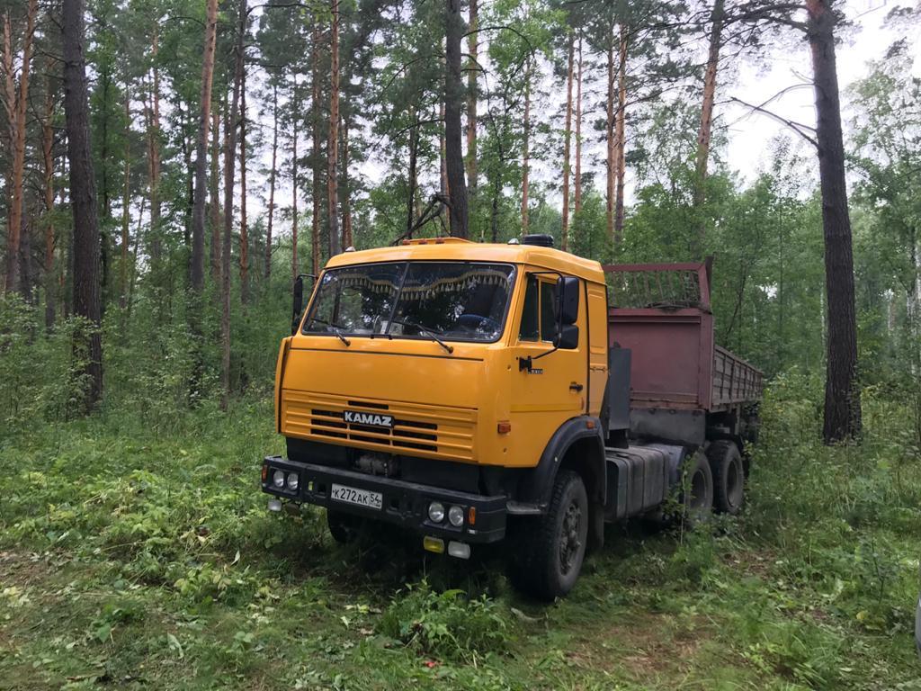 Фото В бору под Новосибирском задержали «чёрных лесорубов» 3