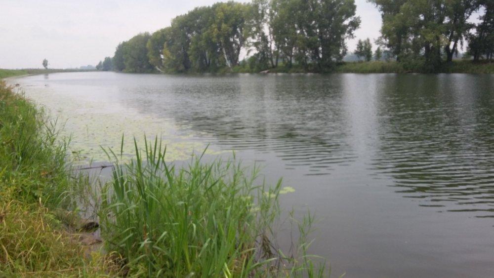 фото Ни хвоста, ни чешуи: где отдохнуть и порыбачить вблизи Новосибирска 2