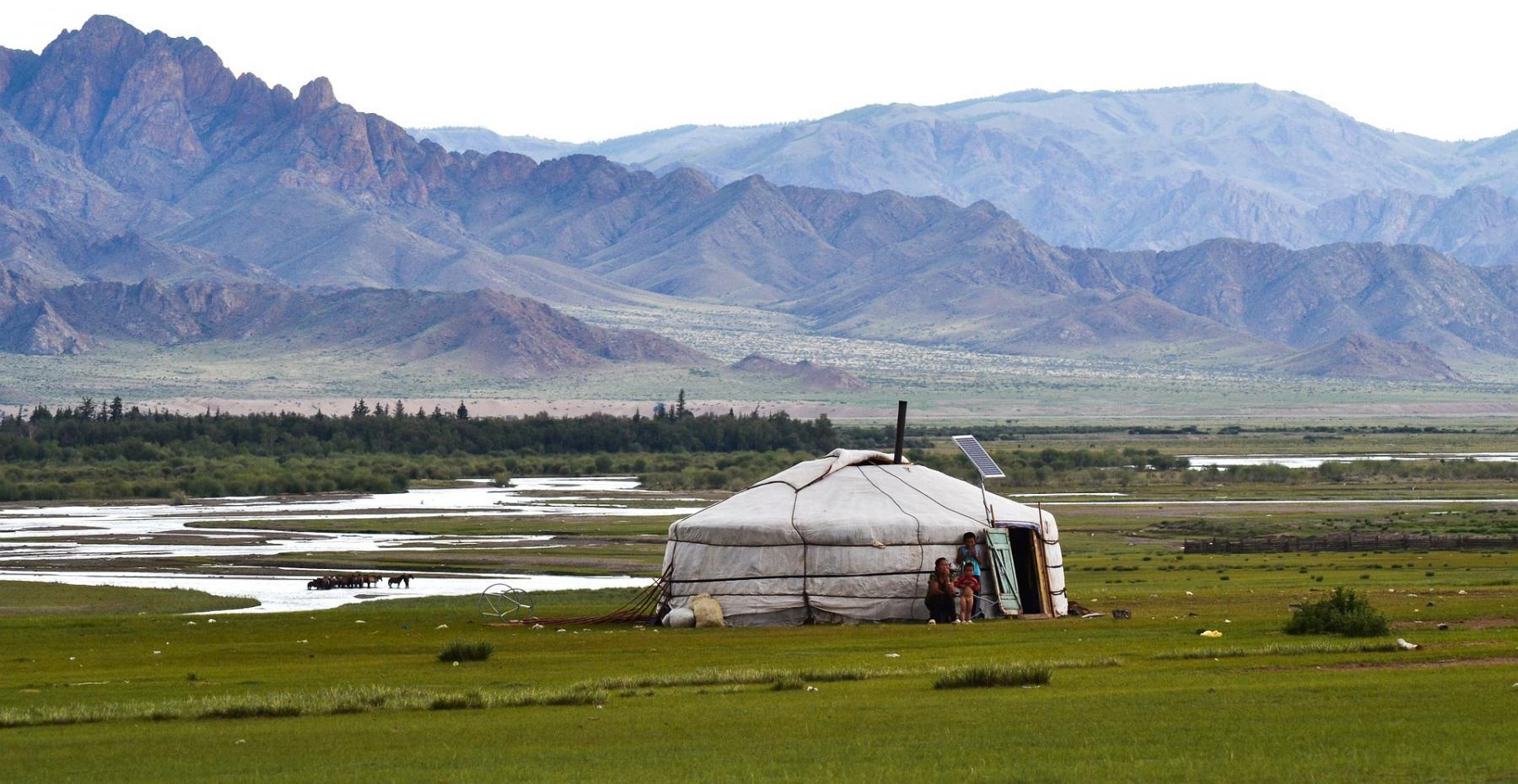 Фото Посольство РФ прокомментировало вспышку бубонной чумы в Монголии 2