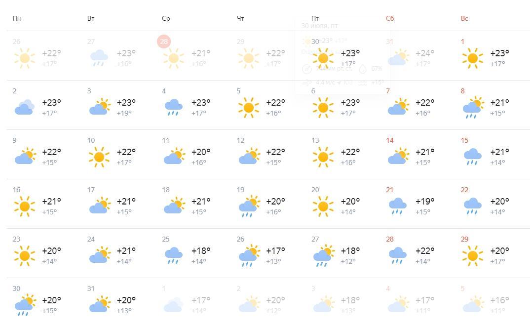 Фото Какой будет погода в августе 2021 года в Новосибирске 3