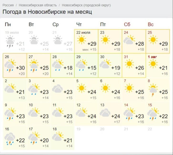 фото В Новосибирске в августе ожидается тёплая и дождливая погода 5