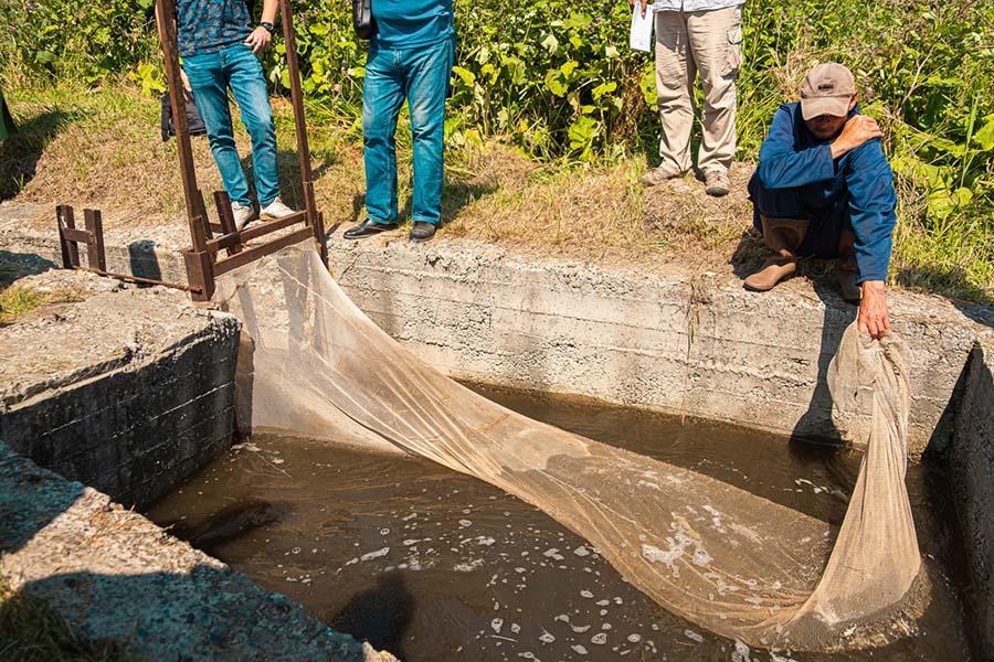 Фото Плыви, рыбка: «Сибантрацит» сохраняет рыбные ресурсы Западной Сибири 7