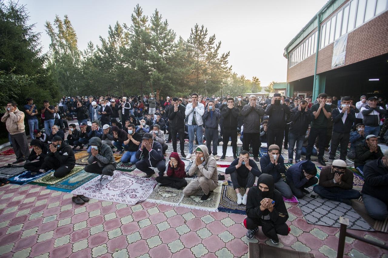 фото Молитва на рассвете и жертвенный баран: как отмечают Курбан-байрам в Новосибирске 3