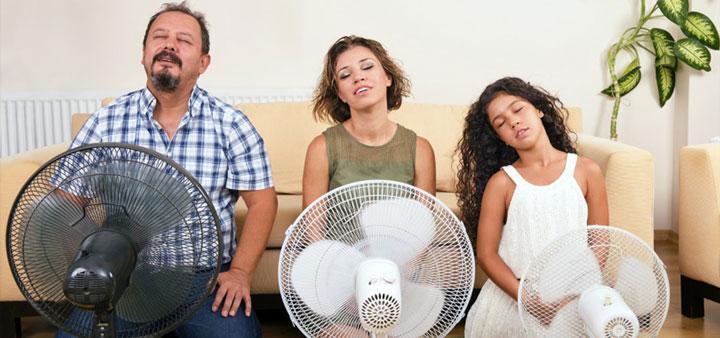 Фото Когда нет кондиционера: пара дельных советов от новосибирцев, как пережить жару в квартире 7