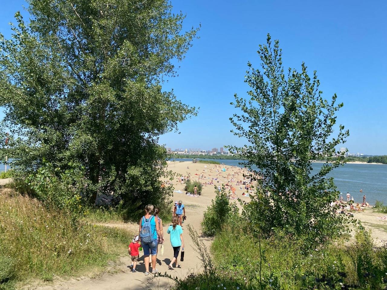 Фото «С пляжа – сразу за сметаной»: новосибирцы рассказали, как лечат солнечные ожоги 2