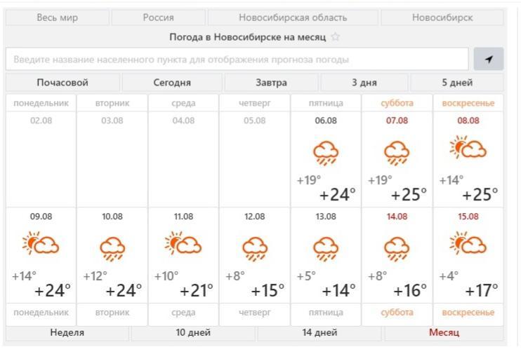 фото В Новосибирске в августе ожидается тёплая и дождливая погода 4