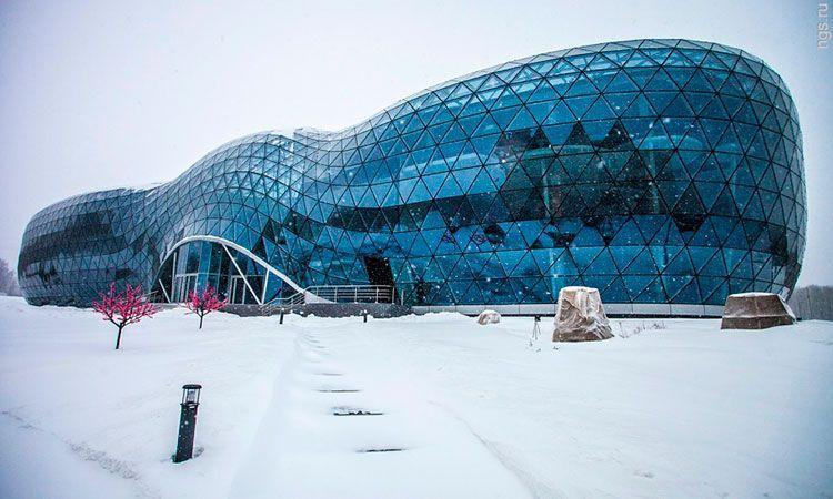 Фото Новосибирский суд приговорил экс-главу Биотехнопарка к условному сроку за крупное мошенничество 2