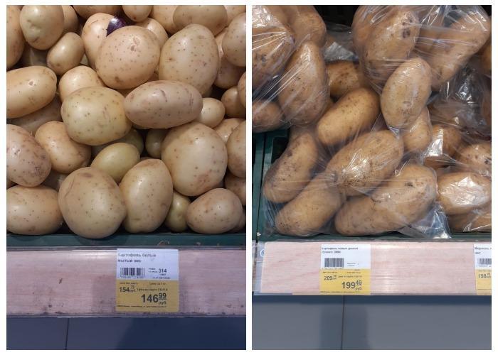 Фото Не вмещается на полку: как изменилась ситуация с картофелем в Новосибирске после заявления Путина 5