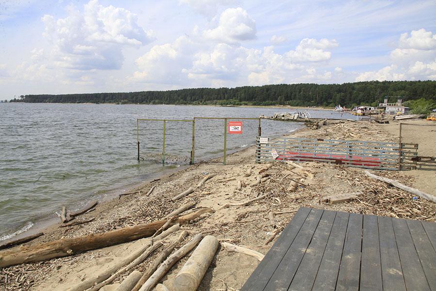 фото В Новосибирске стартовал проект по реорганизации и благоустройству Центрального пляжа Академгородка 5