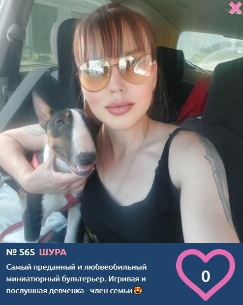 Фото «Я и мой хозяин»: умилительные фото участников конкурса «Главный пёсик Новосибирска» 2