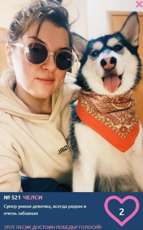 Фото «Я и мой хозяин»: умилительные фото участников конкурса «Главный пёсик Новосибирска» 4