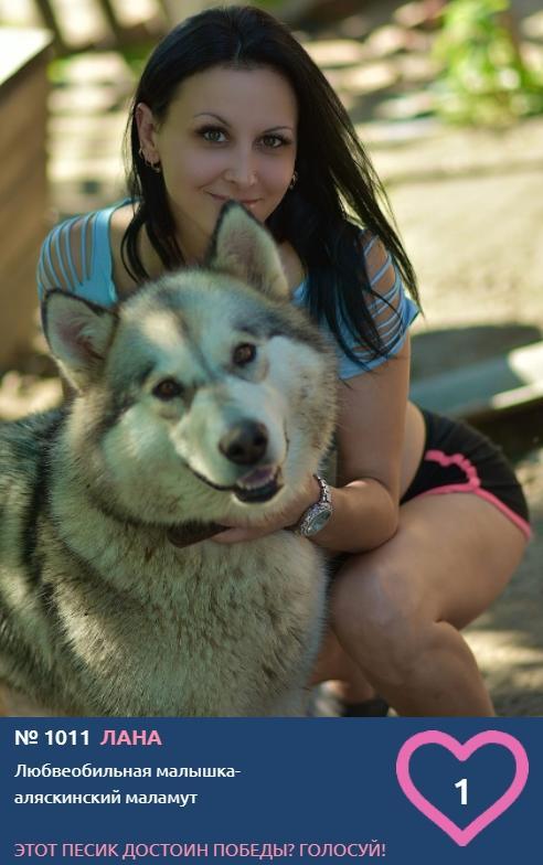 Фото «Я и мой хозяин»: умилительные фото участников конкурса «Главный пёсик Новосибирска» 8