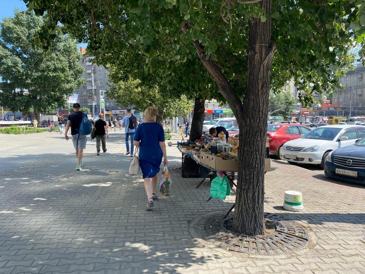фото «Покупают на Хилокском рынке и продают втридорога»: пенсионерка разоблачила уличных торговцев ягодой в Новосибирске 2