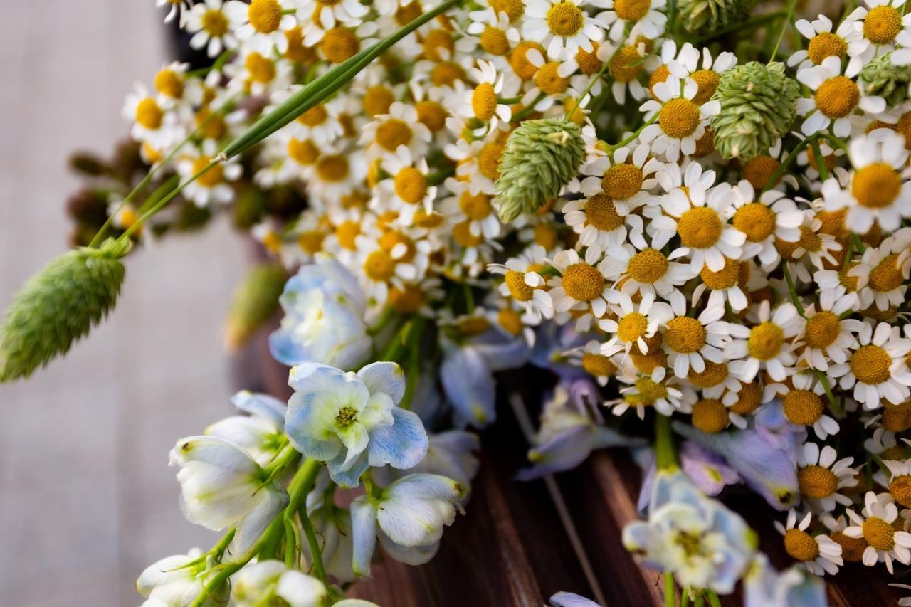 Фото «Запомнит женщина явно не пионы, подаренные в сезон пионов»: флорист из Новосибирска – о моде на полевые цветы и букеты без повода 2