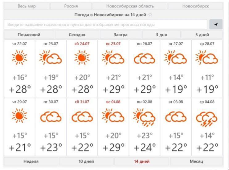 фото В Новосибирске в августе ожидается тёплая и дождливая погода 3