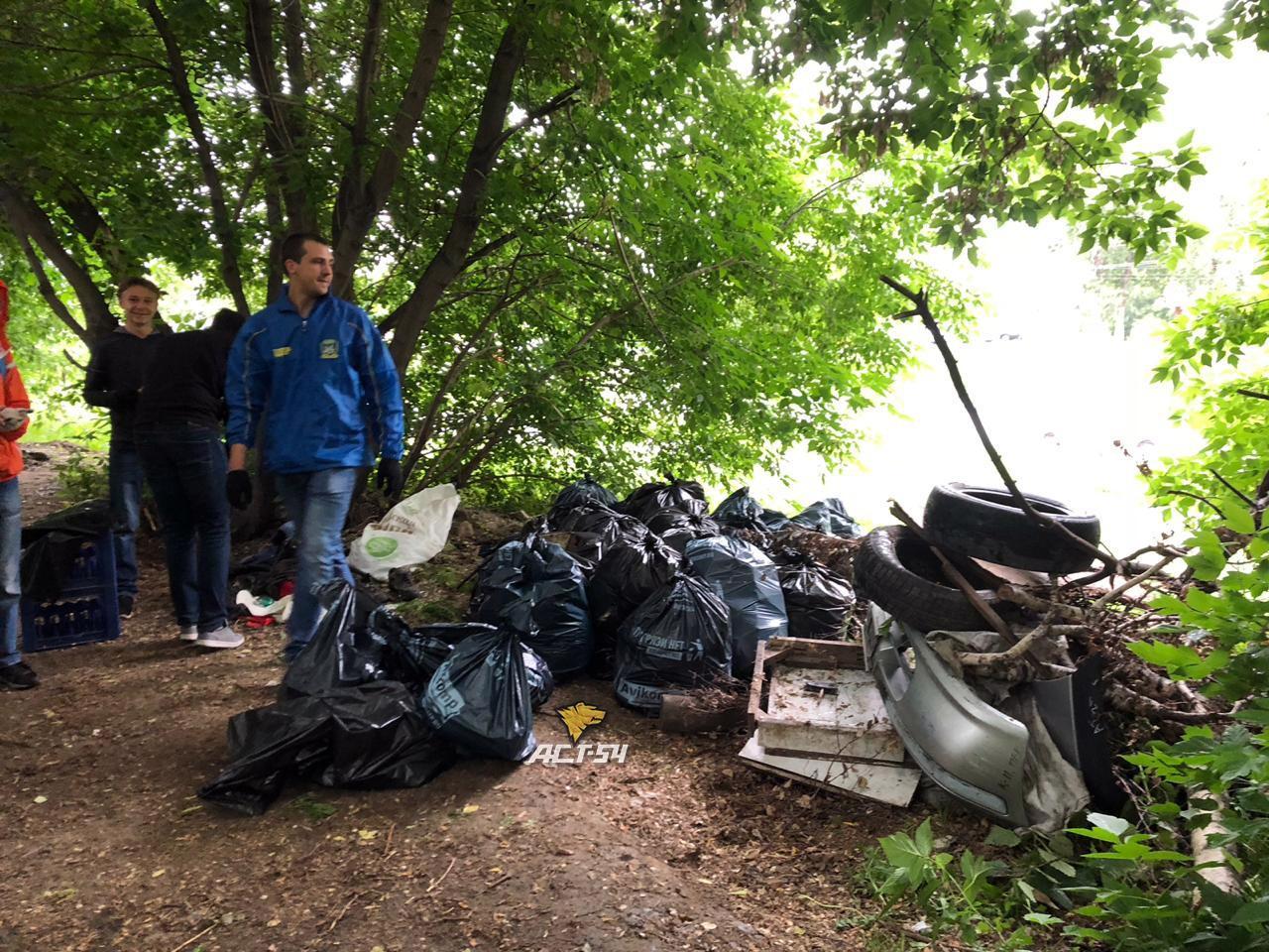 фото Сталкеры убрали «мусорный апокалипсис» у детского сада в Новосибирске 2
