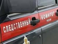 фото Пьяная автомобилистка без прав убила двух детей на Алтае 2