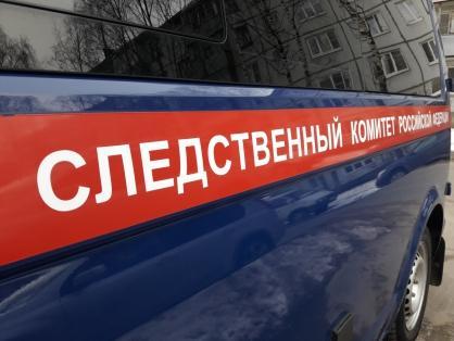 фото Насиловали втроём: задержан ещё один подозреваемый в убийстве 12-летней девочки в Красноярском крае 2