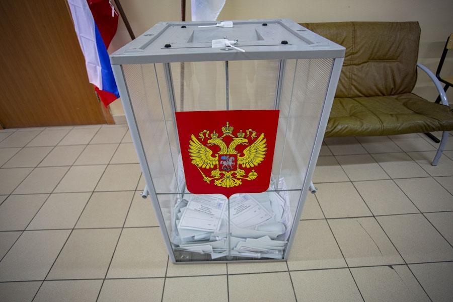 фото В Новосибирской области готовы 2012 участков для досрочного голосования по изменениям в Конституцию РФ 4