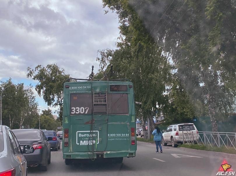 фото Рухнувшее на провода дерево перекрыло движение троллейбусов в Новосибирске 2