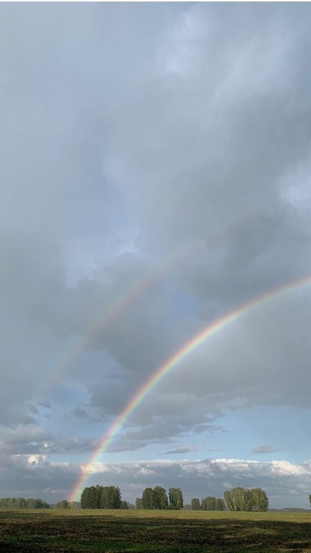 фото В Новосибирске увидели двойную радугу 8