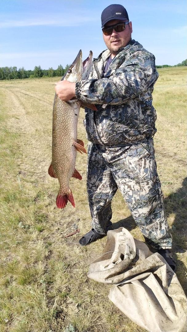 фото «Стопудовый зачёт»: новосибирский рыбак похвастался огромной щукой 2