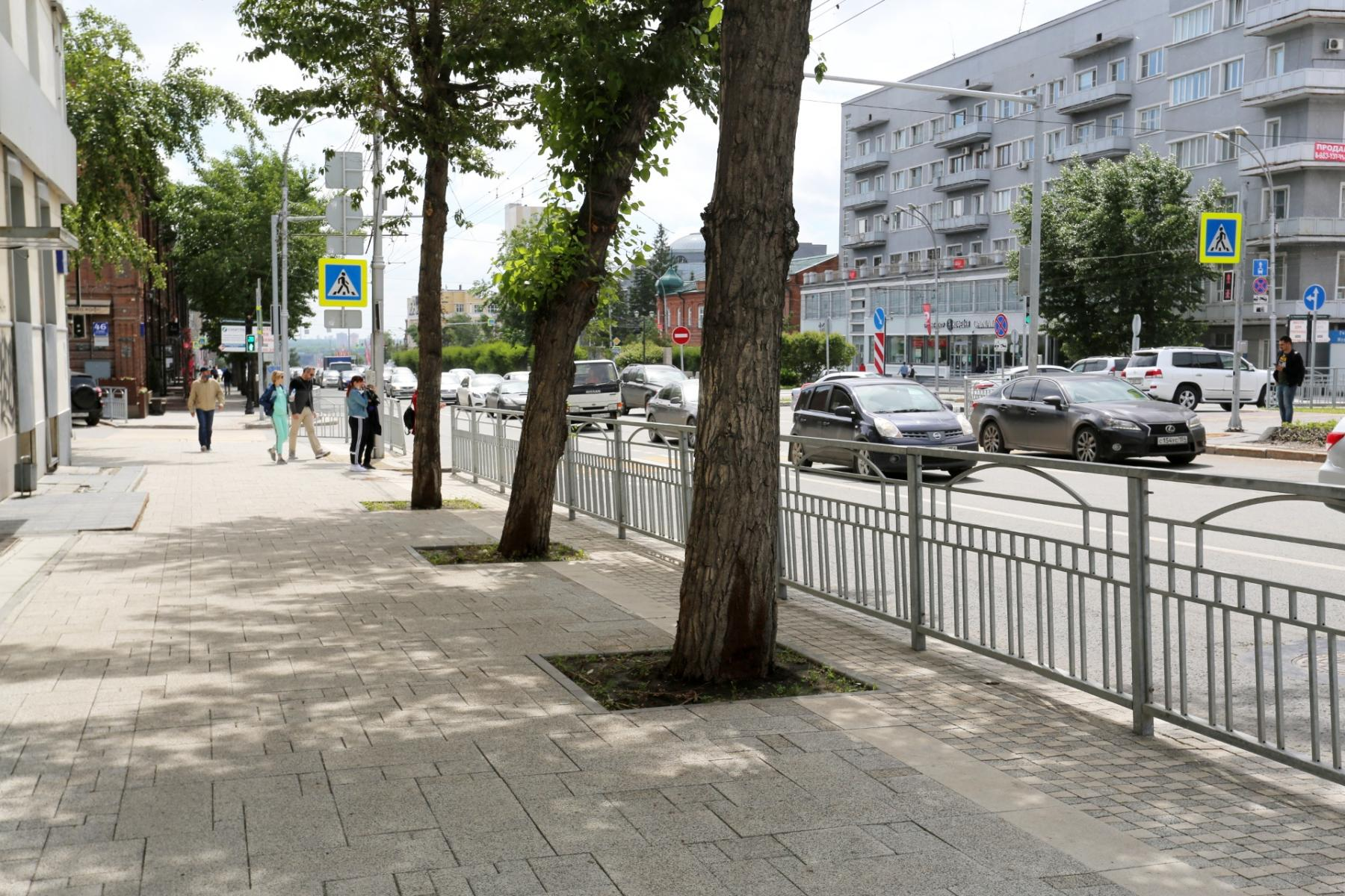 фото Свеженькая взошла: в центре Новосибирска вновь появилась конопля 3