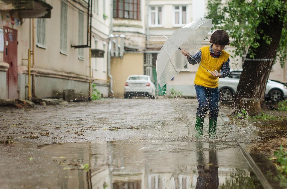 Фото Погода 24 июня: в день парада Победы в Новосибирске будут дожди и грозы 2