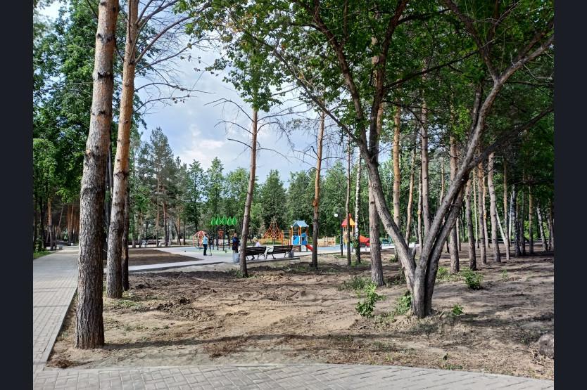 фото Парк в Искитиме станет одним из крупнейших благоустроенных пространств Новосибирской области 2