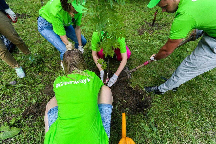 Фото Экологическая акция «Зелёный двор» пришла в Новосибирск 2