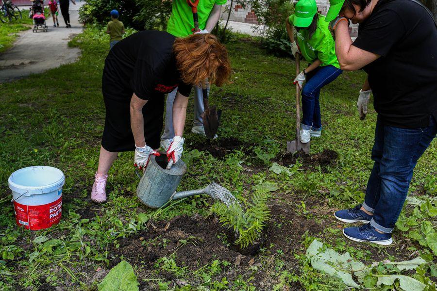 Фото Экологическая акция «Зелёный двор» пришла в Новосибирск 4