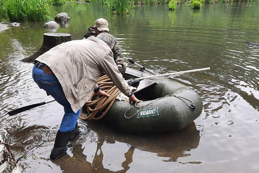 Фото Знаменитый пруд с утками в Академгородке очистят с помощью цветов из Африки 7
