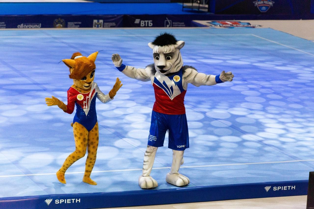 фото Кубок России по спортивной гимнастике проходит в Новосибирске 7