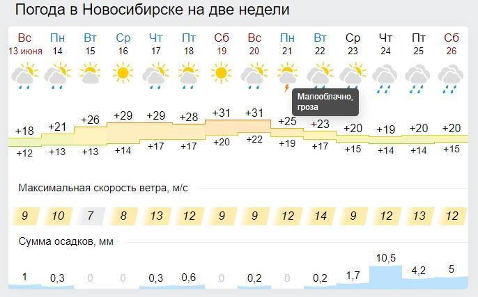 Фото Жара сменится ливнями и резким похолоданием в Новосибирске 2