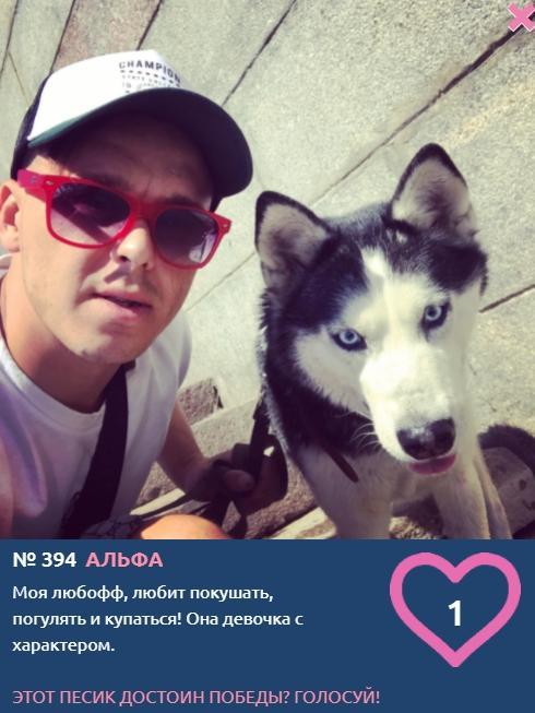 Фото Похожи ли хозяева на своих собак: лучшие совместные фото конкурса «Главный пёсик Новосибирска» 5
