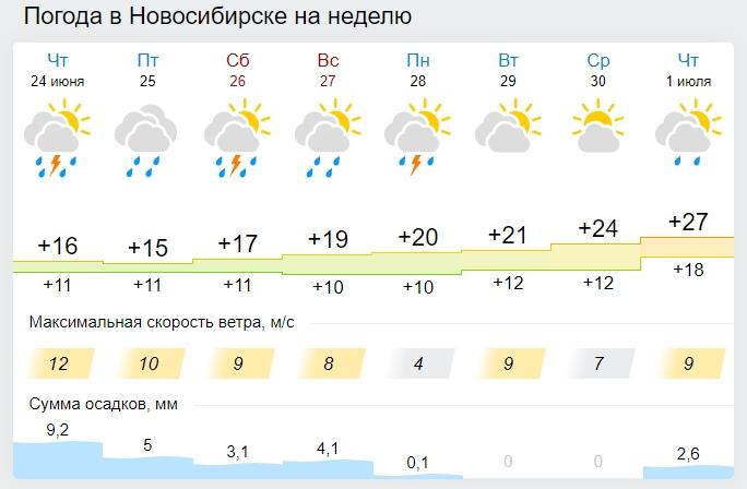 Фото Потепление в выходные и к началу июля обещают синоптики в Новосибирске 2