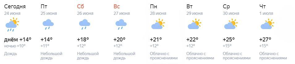 Фото Потепление в выходные и к началу июля обещают синоптики в Новосибирске 3