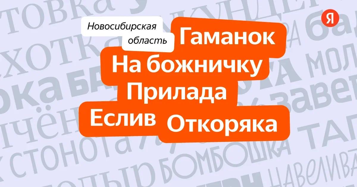 фото Названы уникальные слова Новосибирской области 2