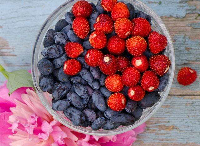 Фото Варенье из жимолости: лучшие рецепты от новосибирских хозяек 4